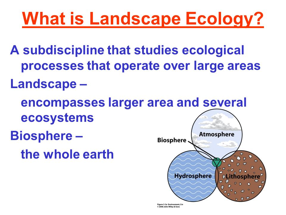 What is Landscape Ecology
