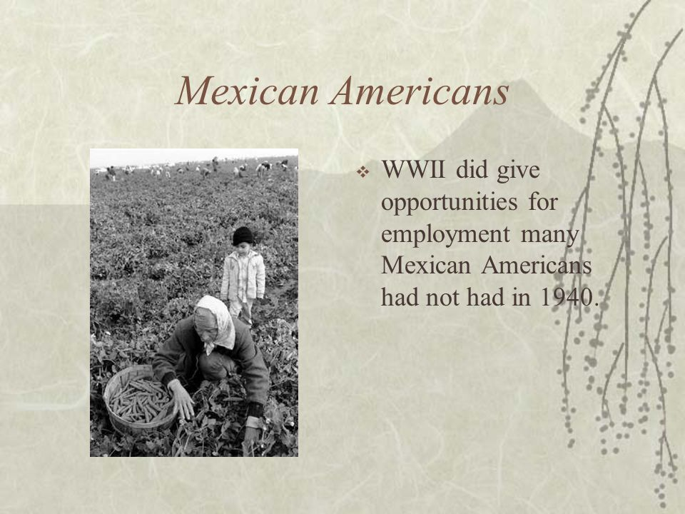 Mexican Americans WWII did give opportunities for employment many Mexican Americans had not had in 1940.