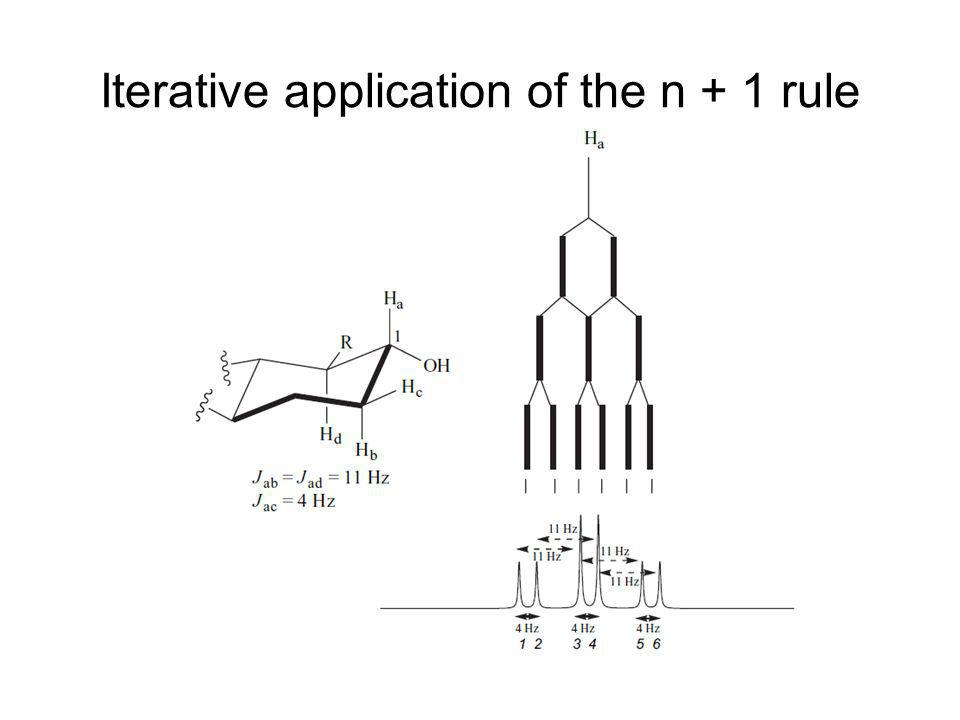 Iterative application of the n + 1 rule