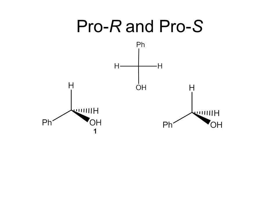 Pro-R and Pro-S 1