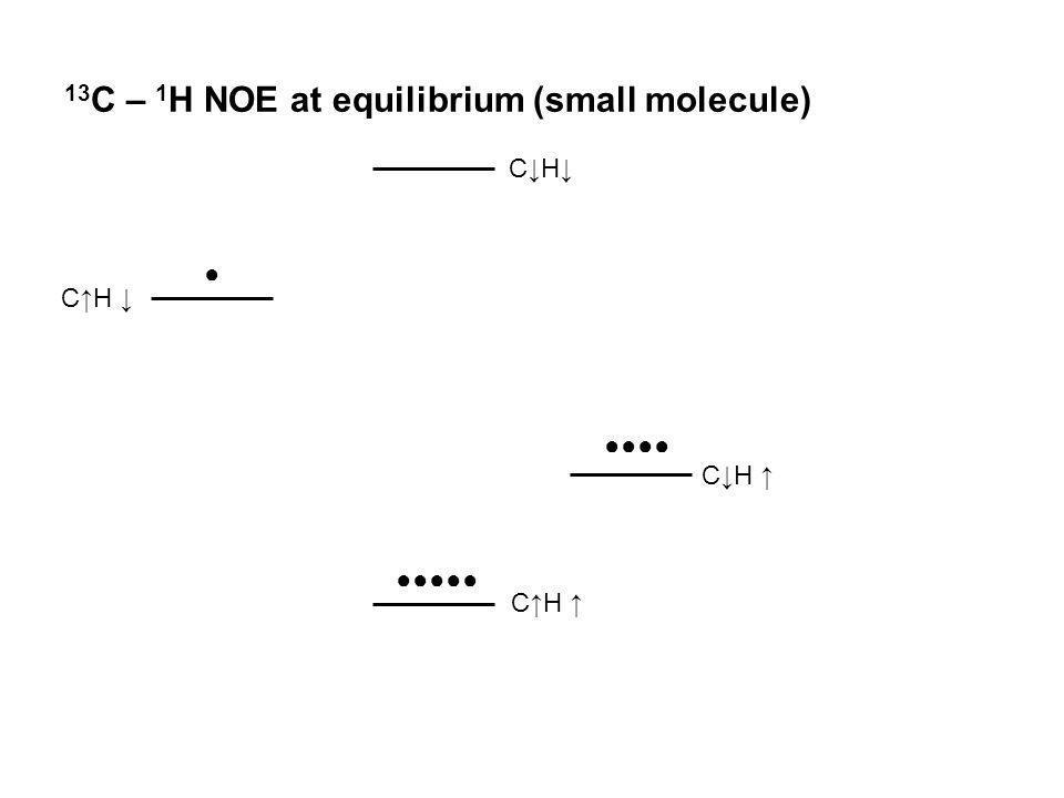 13C – 1H NOE at equilibrium (small molecule)