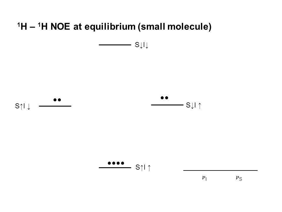 1H – 1H NOE at equilibrium (small molecule)