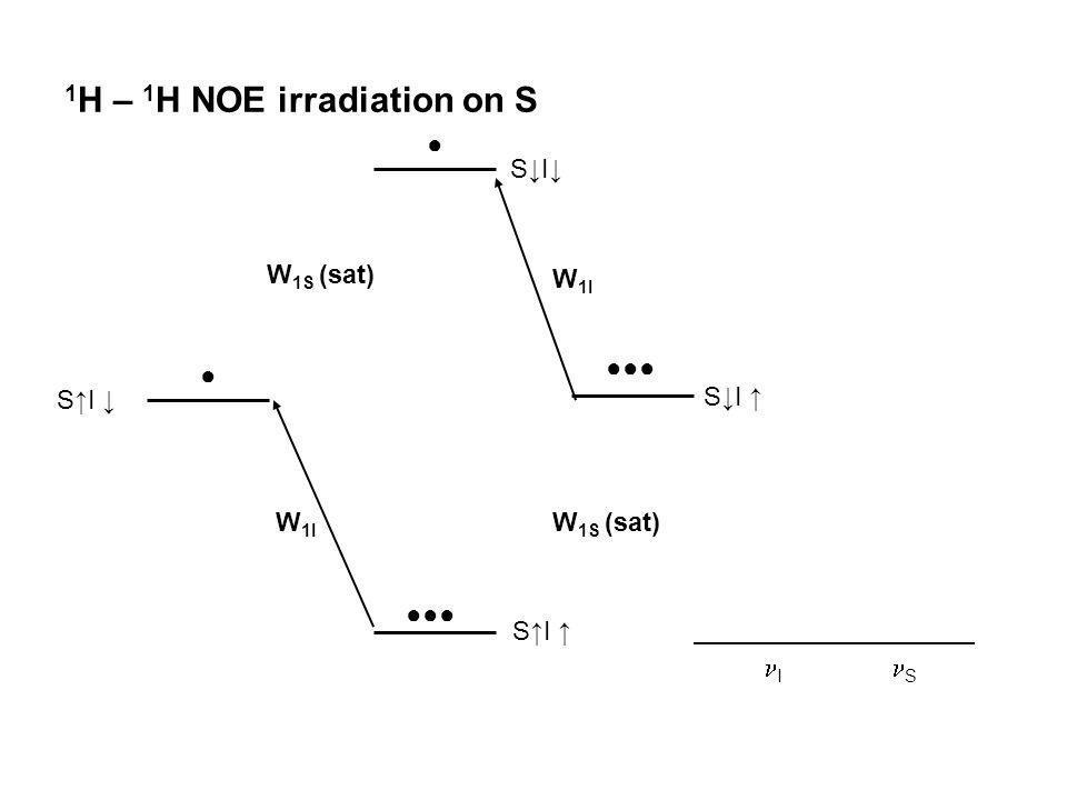1H – 1H NOE irradiation on S