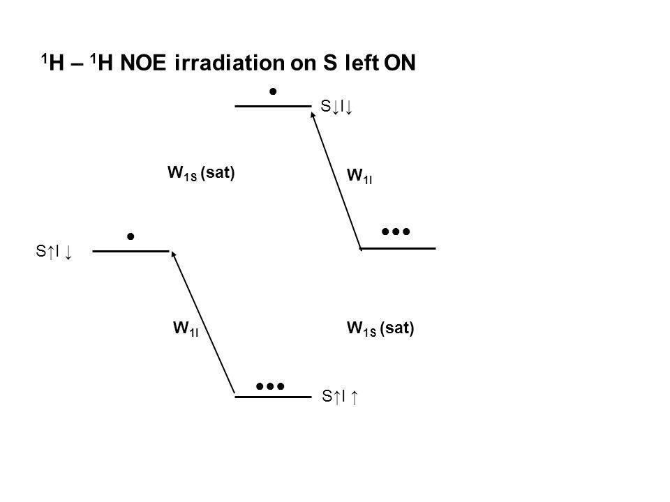 1H – 1H NOE irradiation on S left ON
