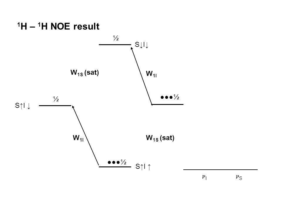 1H – 1H NOE result ½ S↓I↓ W1S (sat) W1I ●●●½ ½ S↑I ↓ W1I W1S (sat)