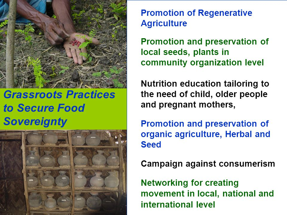 Grassroots Practices to Secure Food Sovereignty
