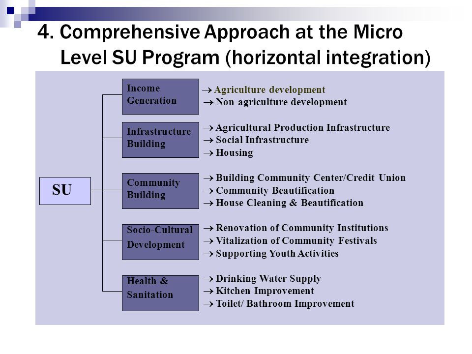 4. Comprehensive Approach at the Micro Level SU Program (horizontal integration)