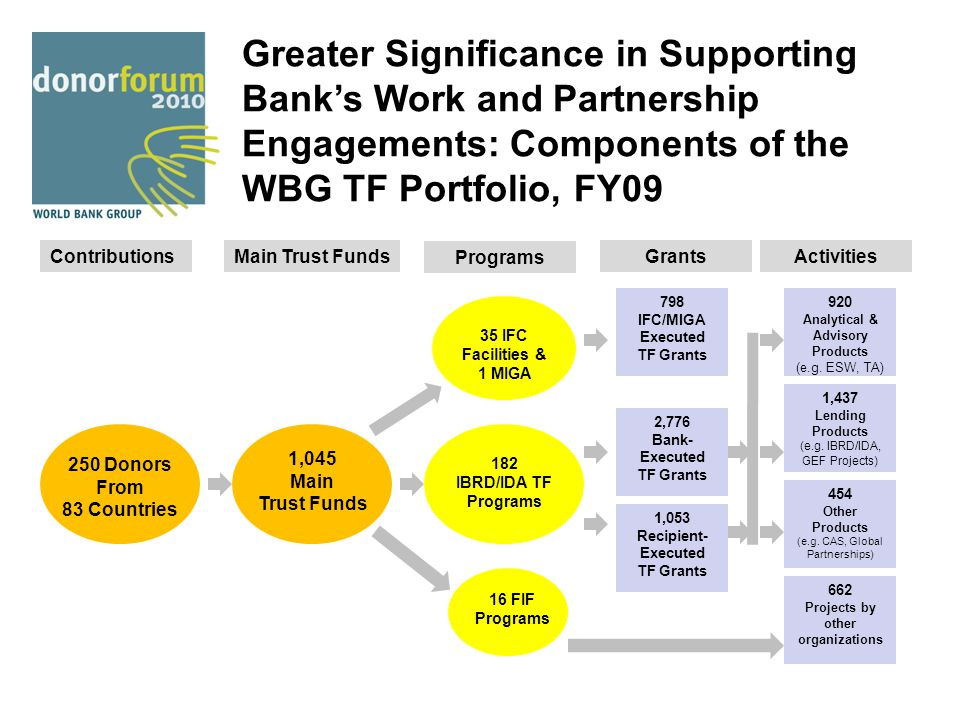 Greater Significance in Supporting Bank's Work and Partnership Engagements: Components of the WBG TF Portfolio, FY09