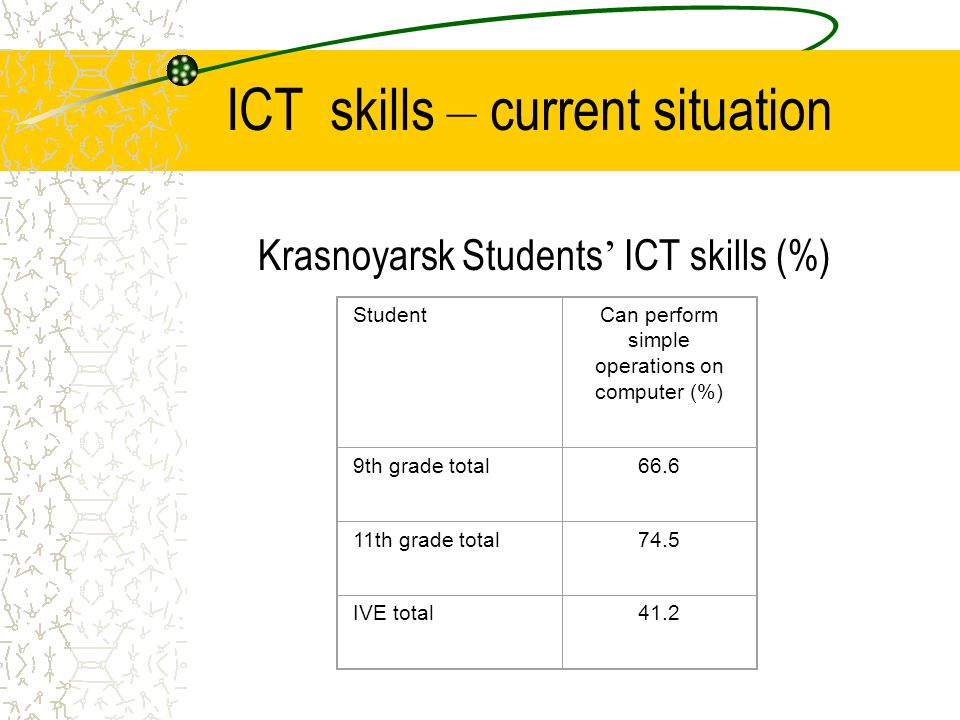 ICT skills – current situation