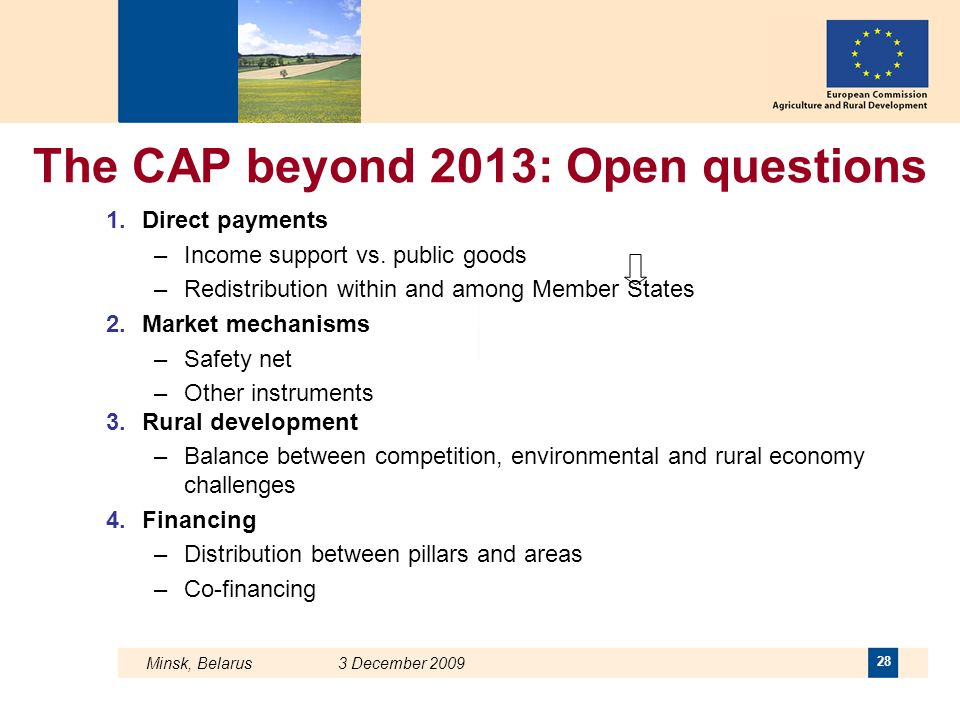 The CAP beyond 2013: Open questions