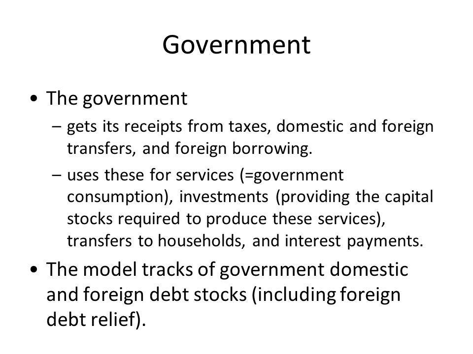 Government The government