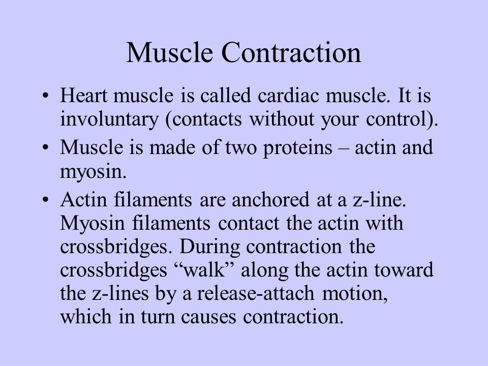 Muscle Contraction Heart muscle is called cardiac muscle. It is involuntary (contacts without your control).