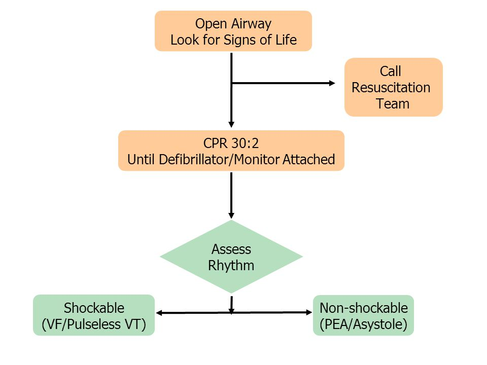Until Defibrillator/Monitor Attached