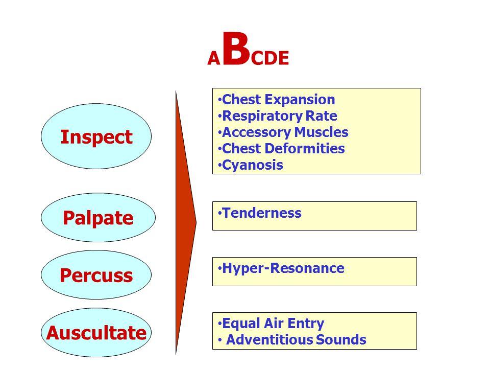 ABCDE Inspect Palpate Percuss Auscultate