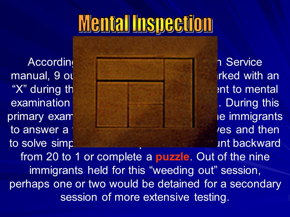 Mental Inspection