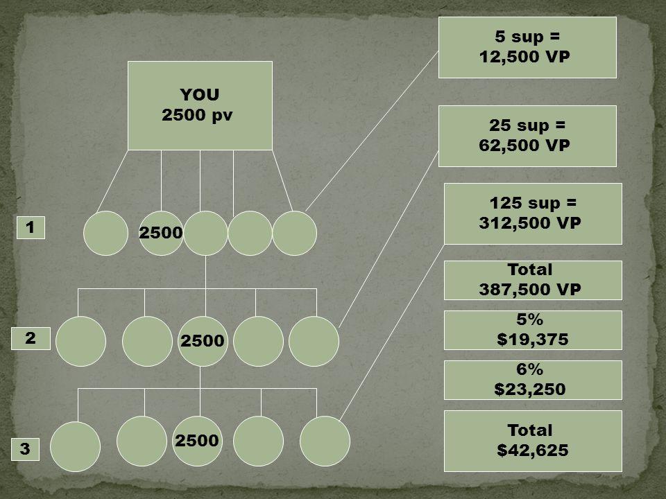 5 sup = 12,500 VP. YOU. 2500 pv. 25 sup = 62,500 VP. 125 sup = 312,500 VP. 2500. 1. Total.