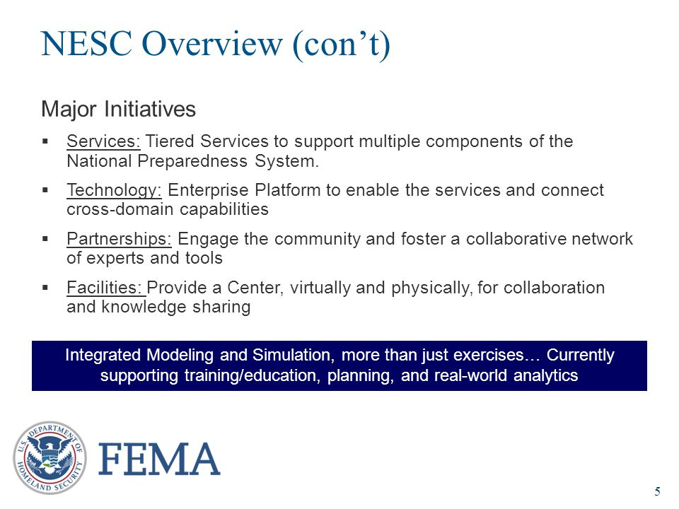 NESC Overview (con't) Major Initiatives
