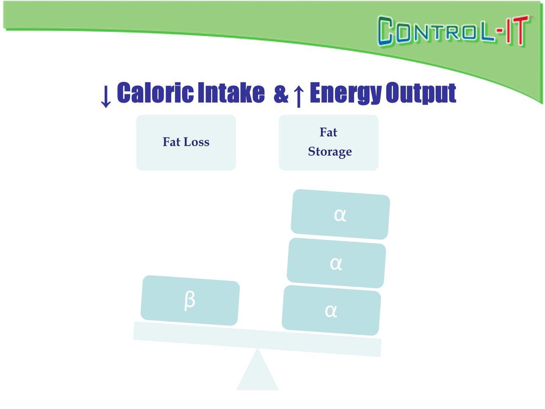 ↓ Caloric Intake & ↑ Energy Output