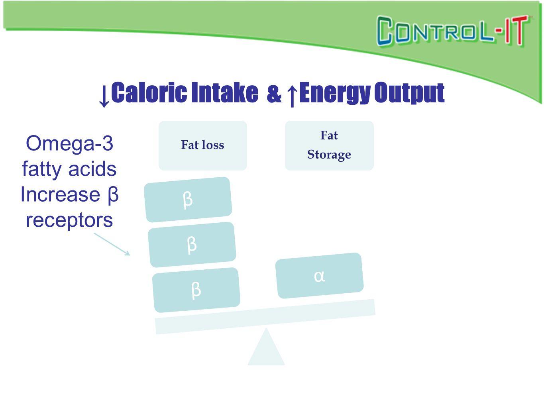 ↓Caloric Intake & ↑Energy Output