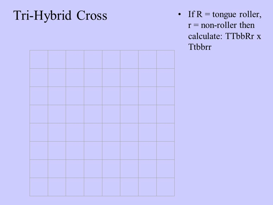 Tri-Hybrid Cross If R = tongue roller, r = non-roller then calculate: TTbbRr x Ttbbrr