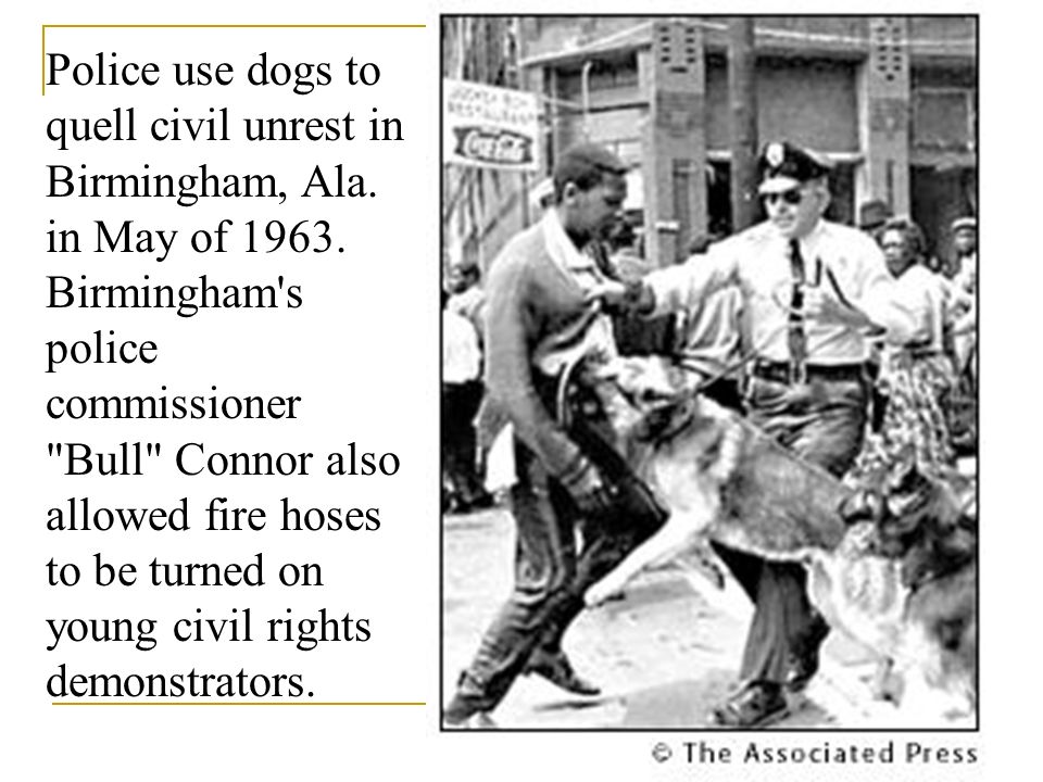Police use dogs to quell civil unrest in Birmingham, Ala