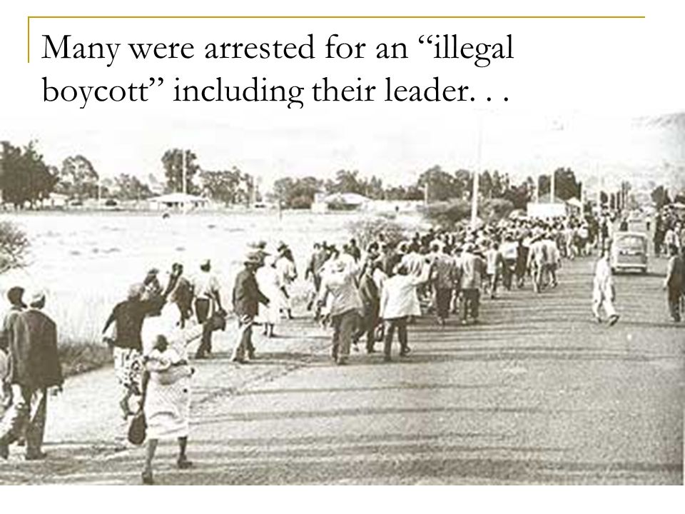 Many were arrested for an illegal boycott including their leader. . .