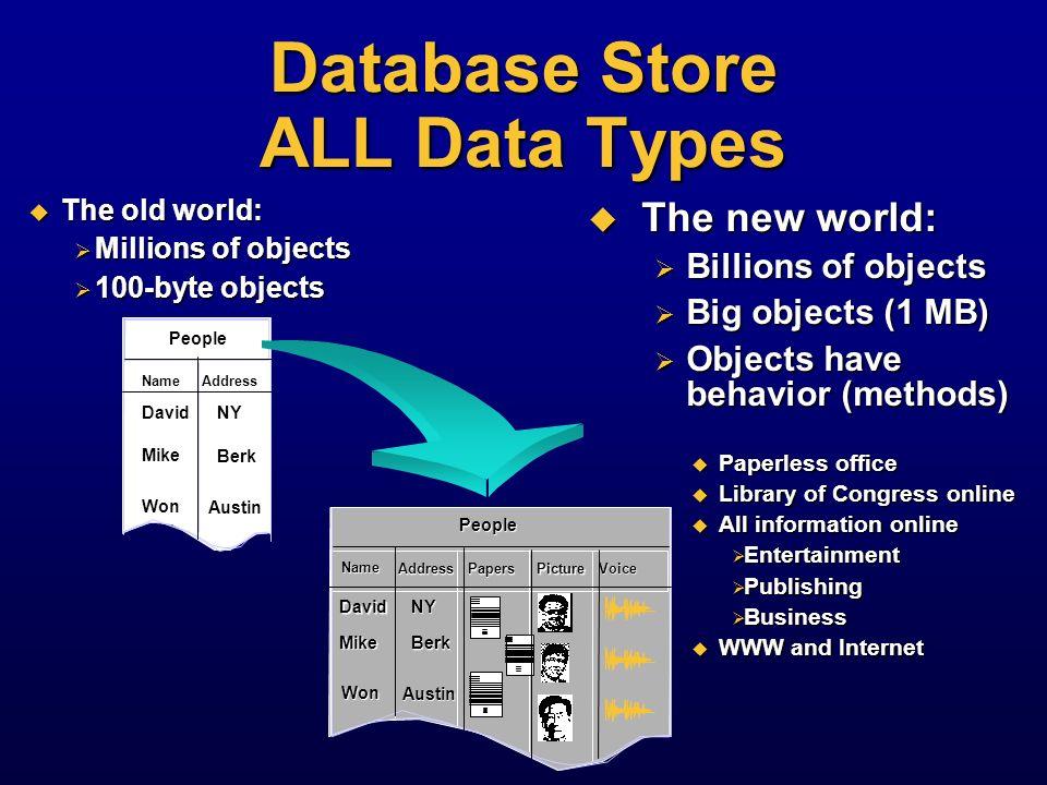 Database Store ALL Data Types