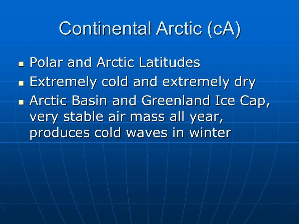 Continental Arctic (cA)