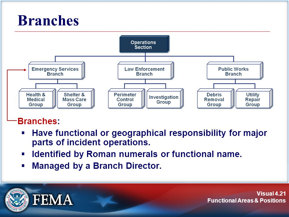 Branches Branches: Have functional or geographical responsibility for major parts of incident operations.