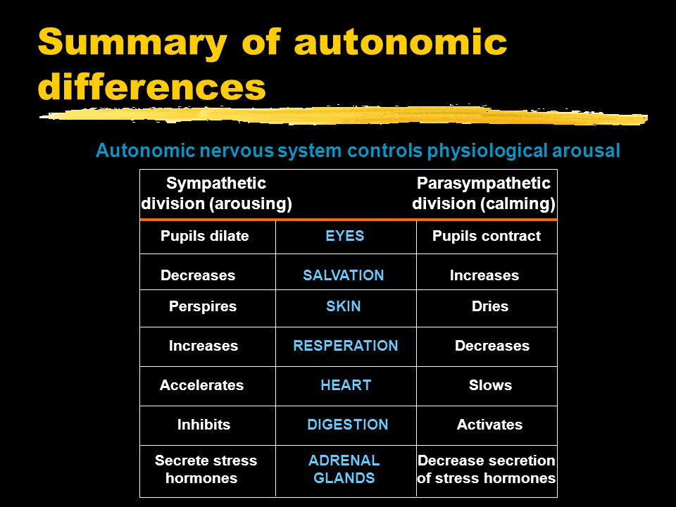 Summary of autonomic differences