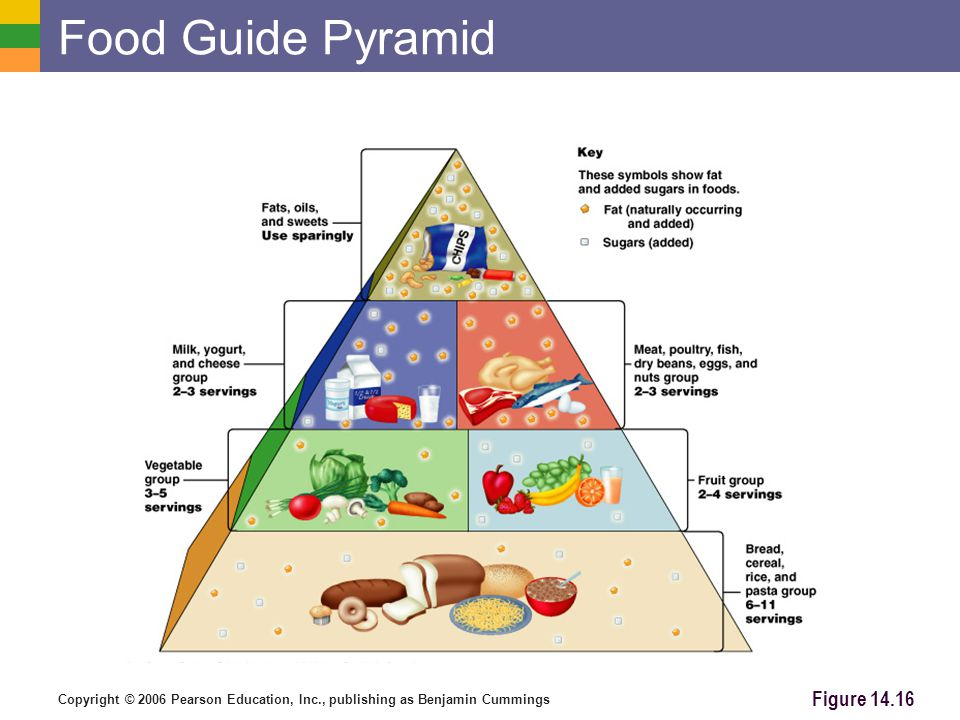 Food Guide Pyramid Carbohydrates are The body's preferred source to produce cellular energy (ATP)
