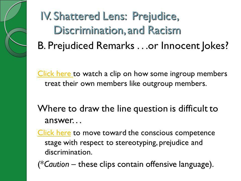 IV. Shattered Lens: Prejudice, Discrimination, and Racism