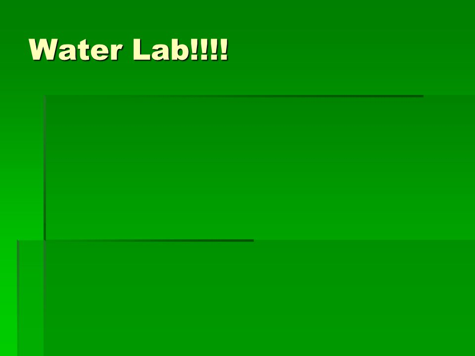 Water Lab!!!!