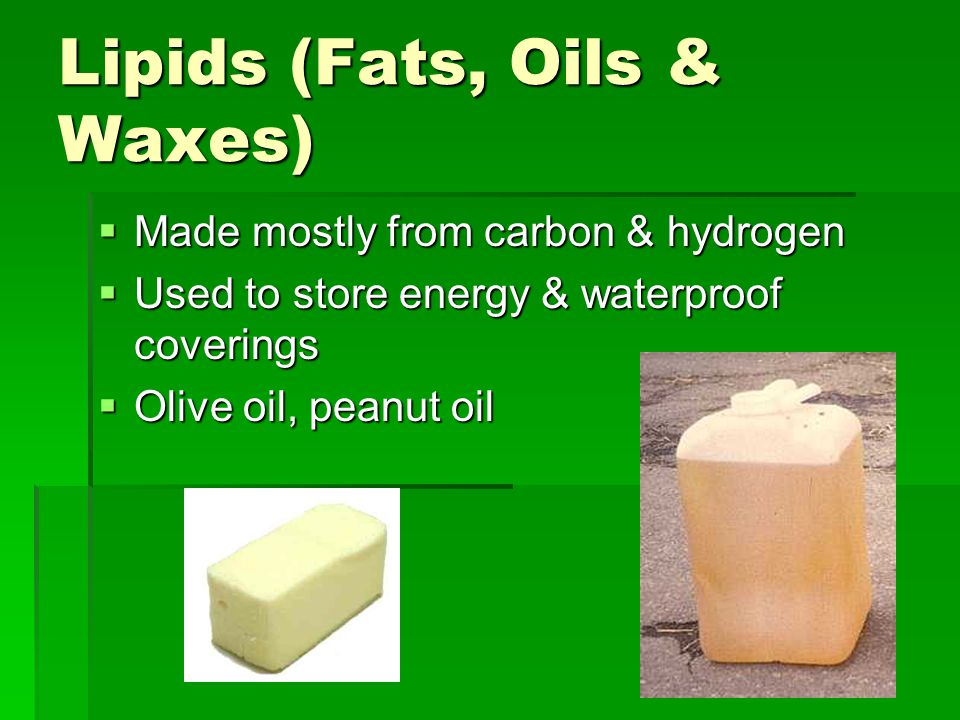 Lipids (Fats, Oils & Waxes)