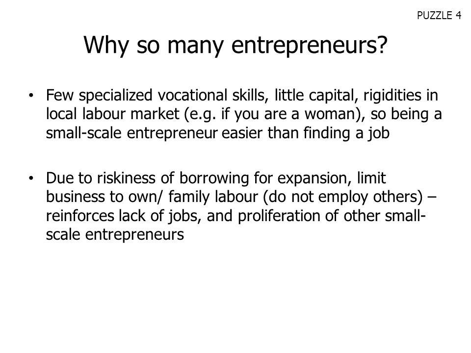 Why so many entrepreneurs