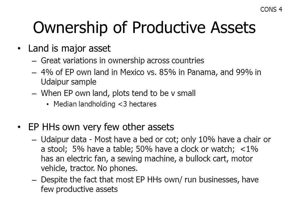 Ownership of Productive Assets
