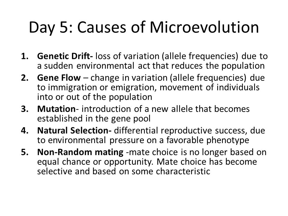 Day 5: Causes of Microevolution