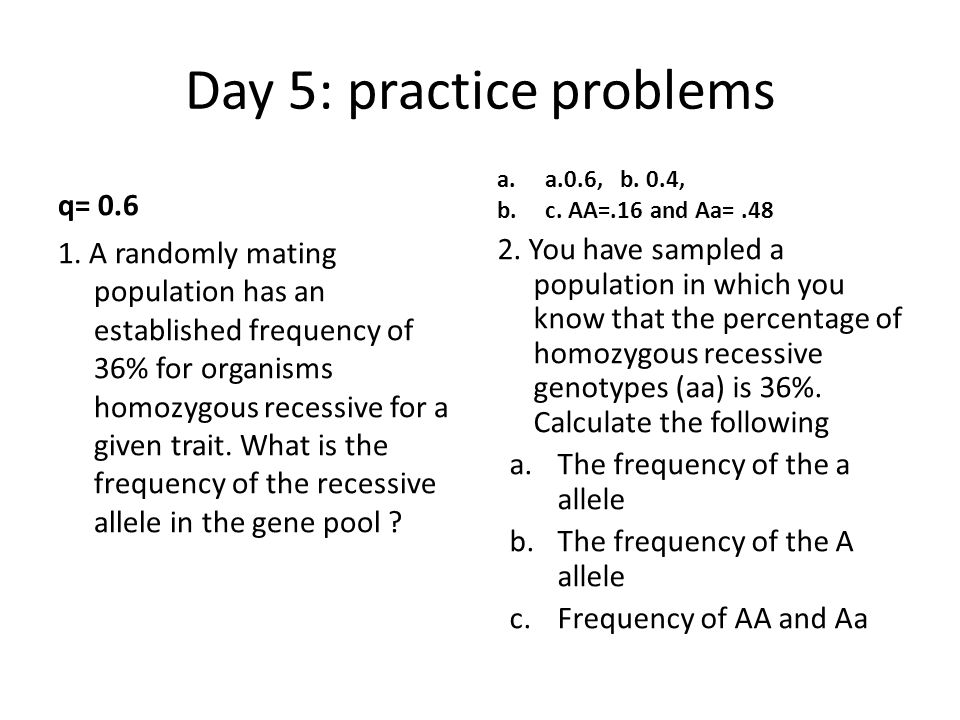 Day 5: practice problems