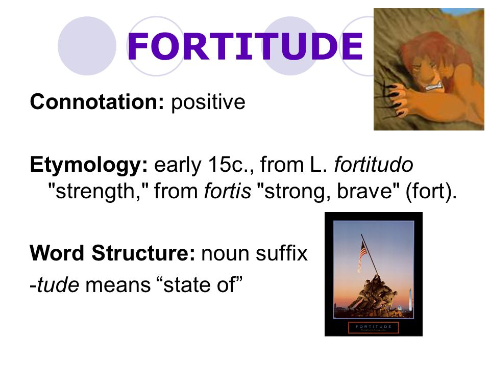FORTITUDE Connotation: positive
