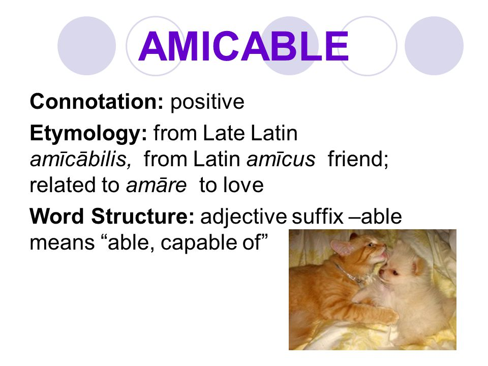 AMICABLE Connotation: positive