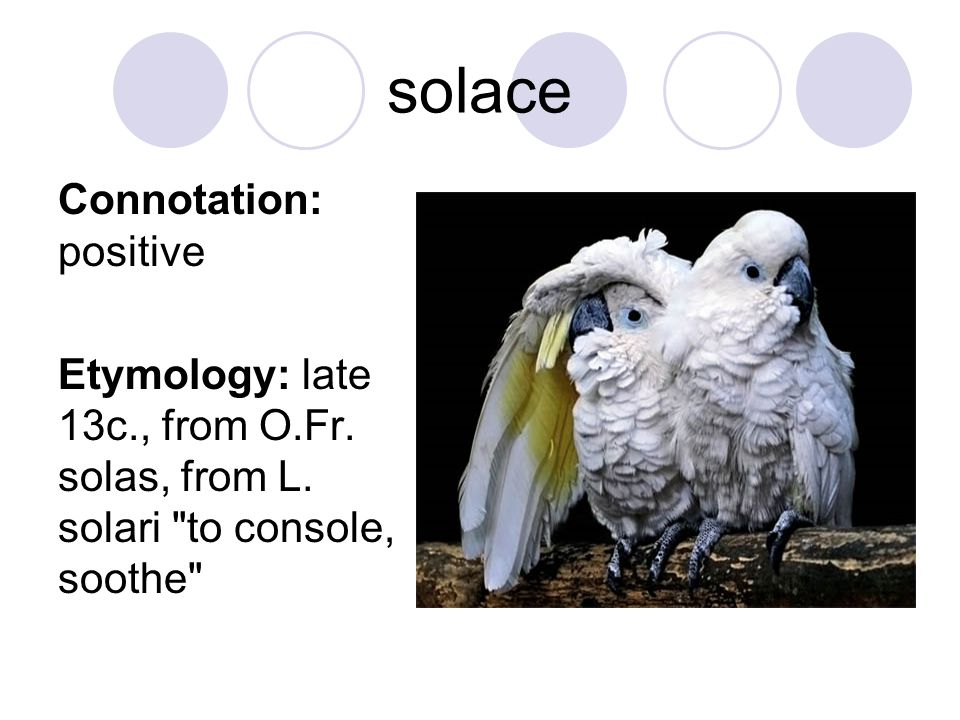 solace Connotation: positive