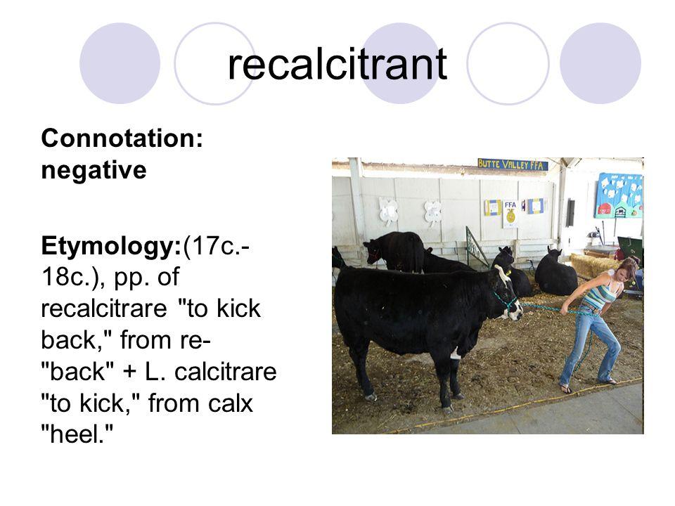 recalcitrant Connotation: negative