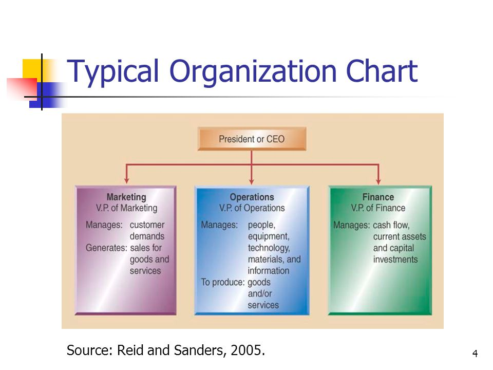 Typical Organization Chart