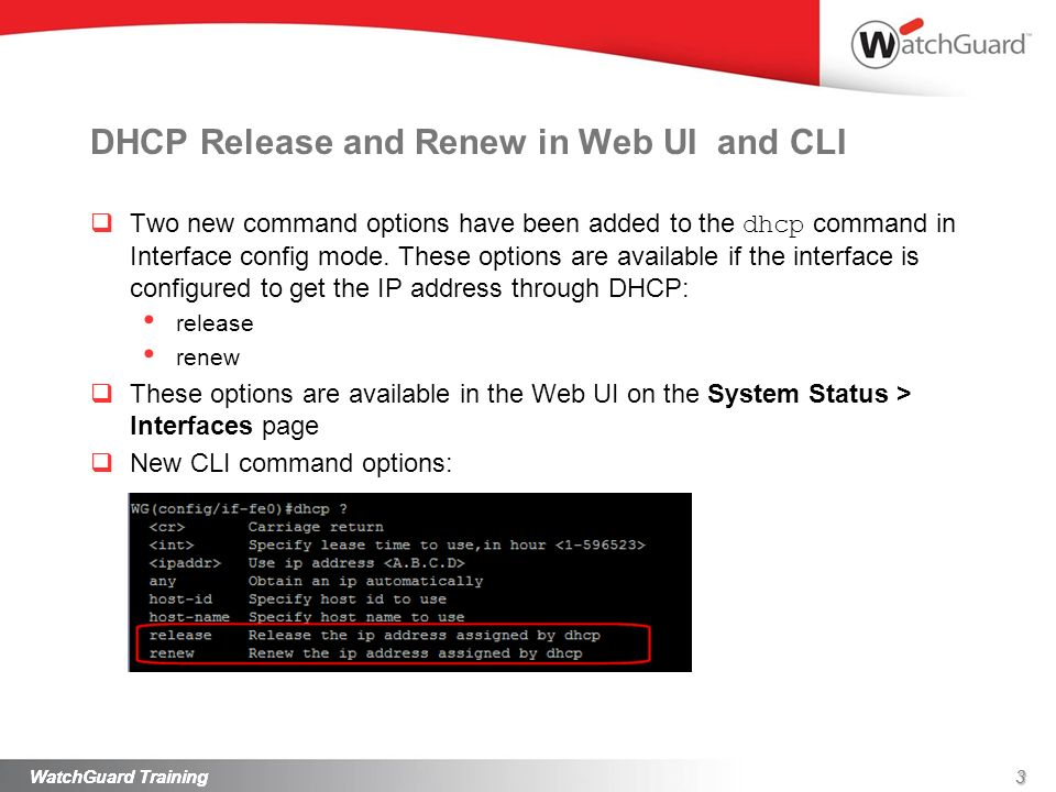 DHCP Release and Renew in Web UI and CLI
