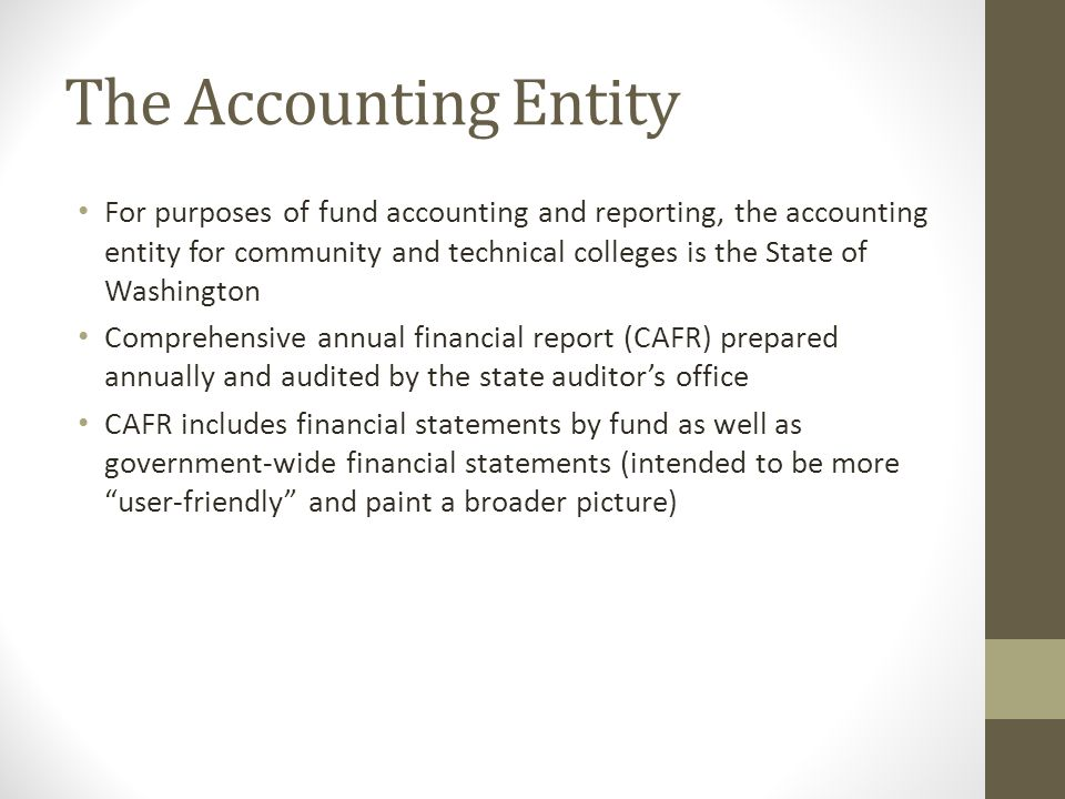 The Accounting Entity