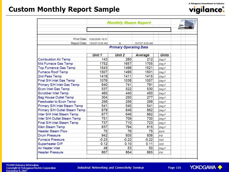 Custom Monthly Report Sample