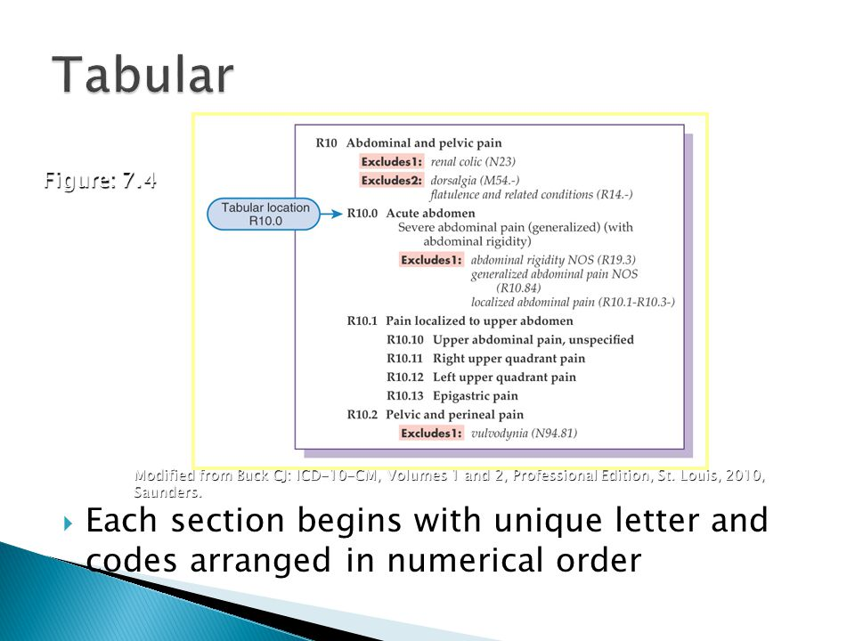 Tabular Figure: 7.4. The 21 chapters of the Tabular are arranged in numeric order after the first letter assigned to the chapter.