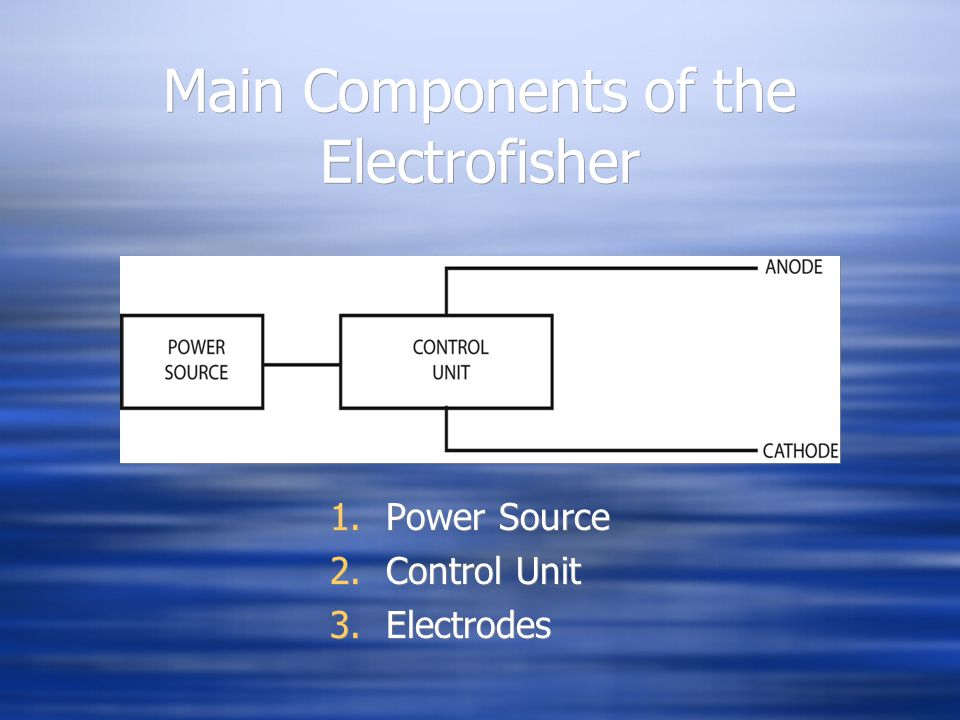 Main Components of the Electrofisher