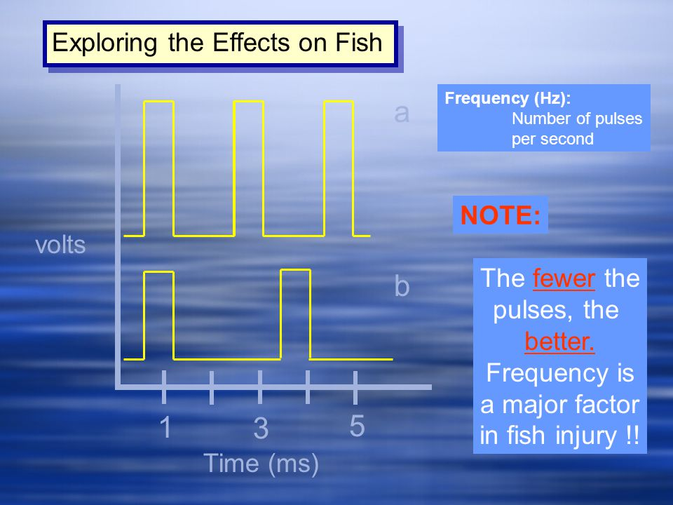 a b 1 3 5 Exploring the Effects on Fish NOTE: volts The fewer the