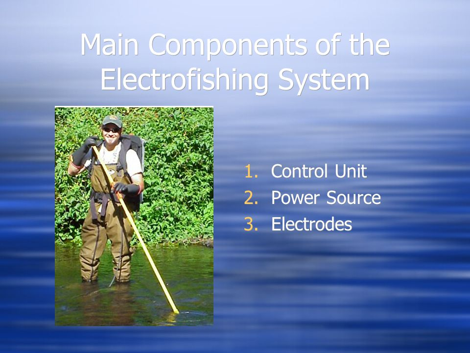 Main Components of the Electrofishing System